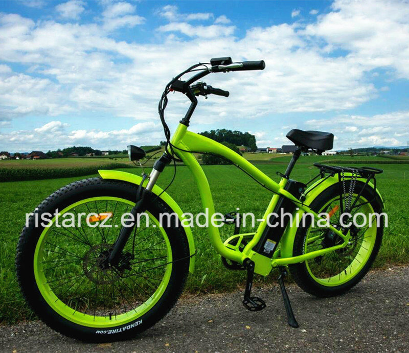 Hot Selling Beach Fat Tire Electric Bike in China (RSEB-505)