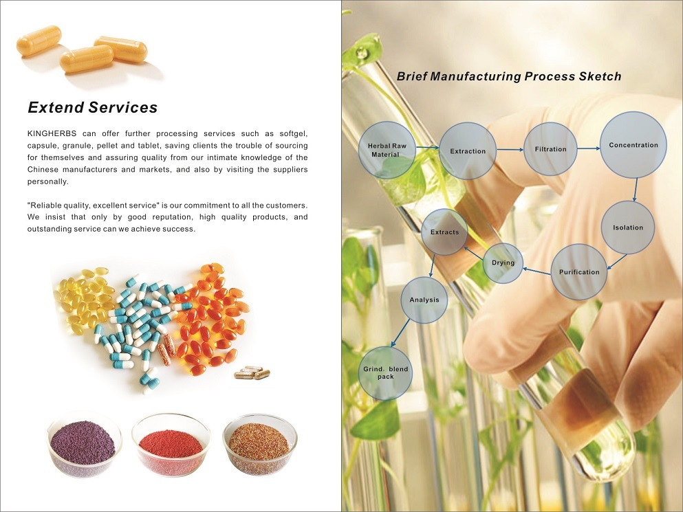 Natural Top Grade Herbal Sea Buckthorn Seed Oil