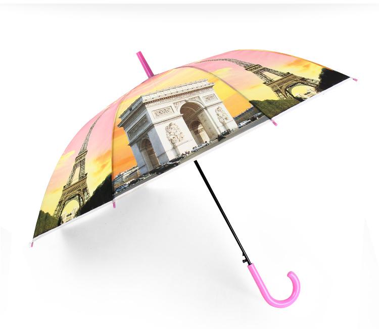 Colour Long Umbrella