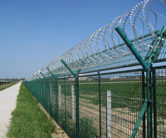 Galvanized Razor Blade Fence (R-DPCS)