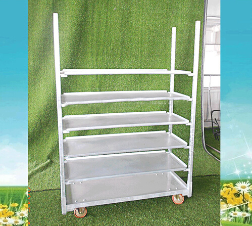 Multi Layers Flower Trolley/Cart