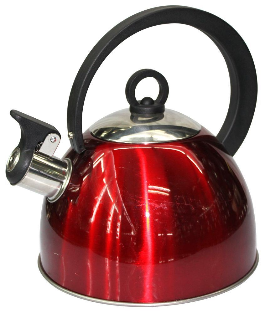 Stainless Steel Whistling Kettle with Double Bottom