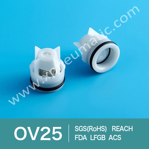 Plastic Non Return Cartridge Style Check Valve Dn10