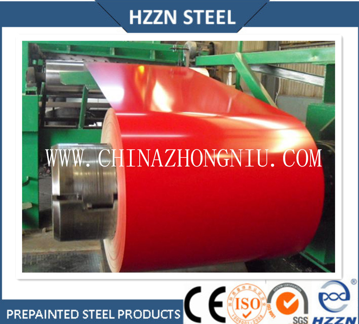 Prepainted Steel Coil for Roofing Sheets