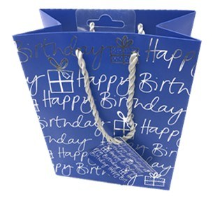 High Quility Customized Paper Hand Bag for Shopping and Gift