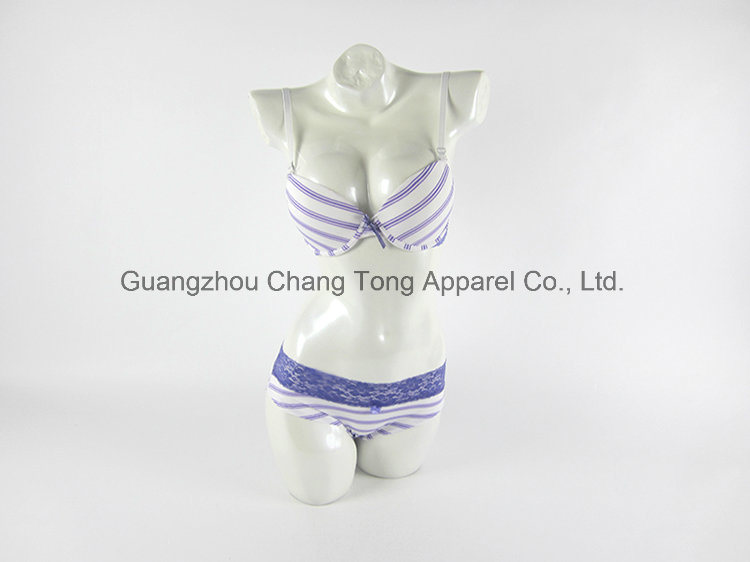 Sexy Ladies Bra Set Women Underwear