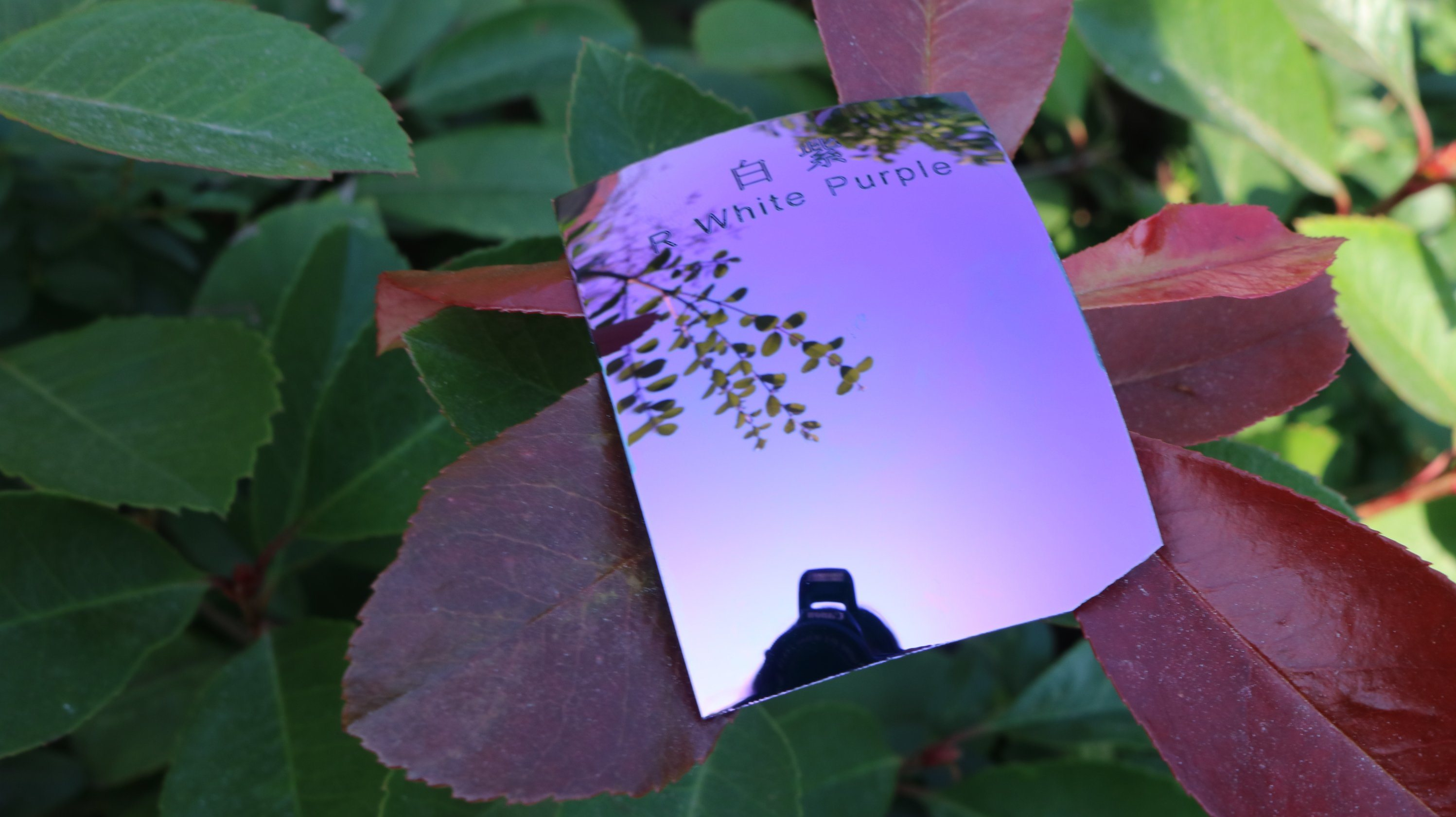 Polarized Tac Replacement Lens Sunglass Lens (R White Purple)