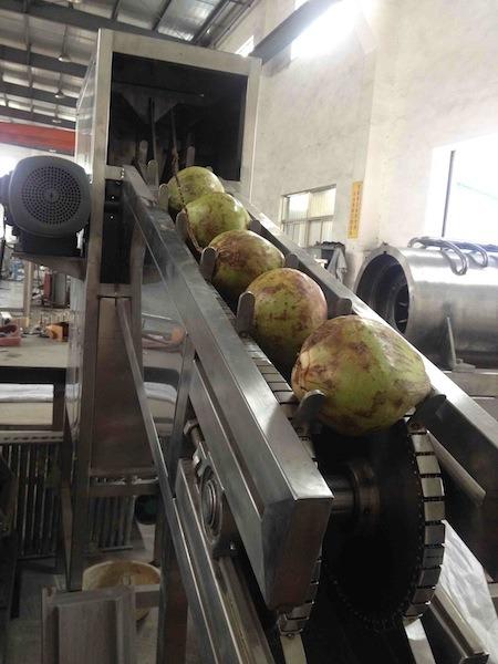 Coconut Process Machine