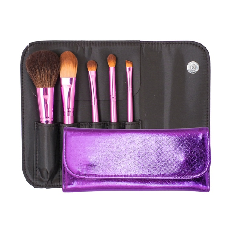 Fashion Daily Using 5PCS Cosmetic Brush/Makeup Brush