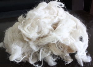 Combing/Carded Yak/Camel / Yak Cashmere Wool Raw Material/Fabric/Textile