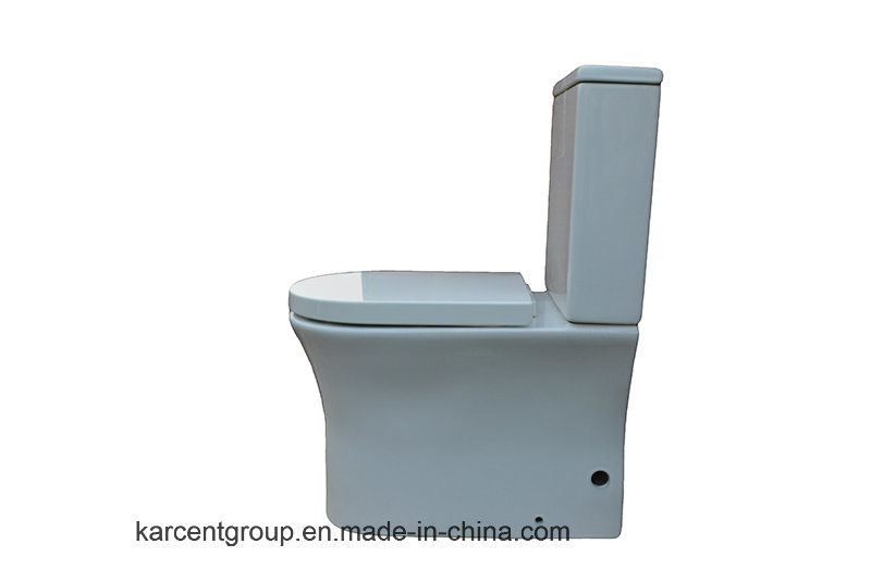 Two Piece Ceramic Toilet Ce Washdown Water Closet Wc 13315 Rimless