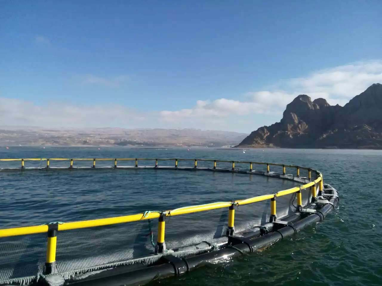 environmental Friendly Floating Cage System for Fish Farming Cage