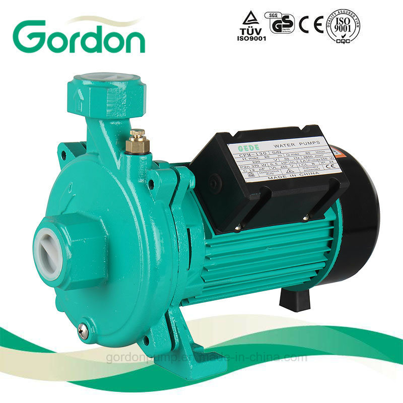 Electric Irrigation Centrifugal Water Pump with Stainless Steel Impeller (CPM158)