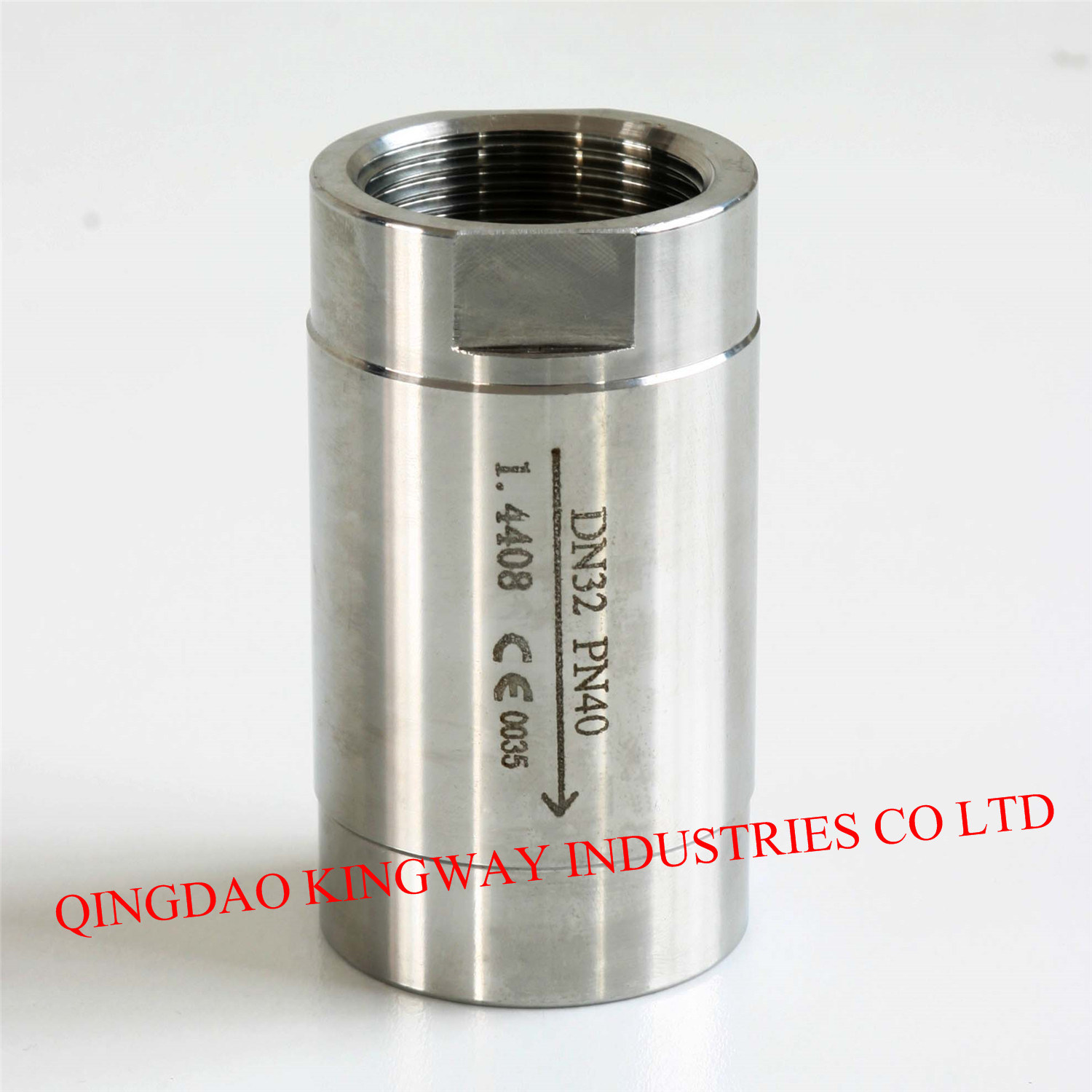 1-PC Spring Vertical Check Valve Threaded