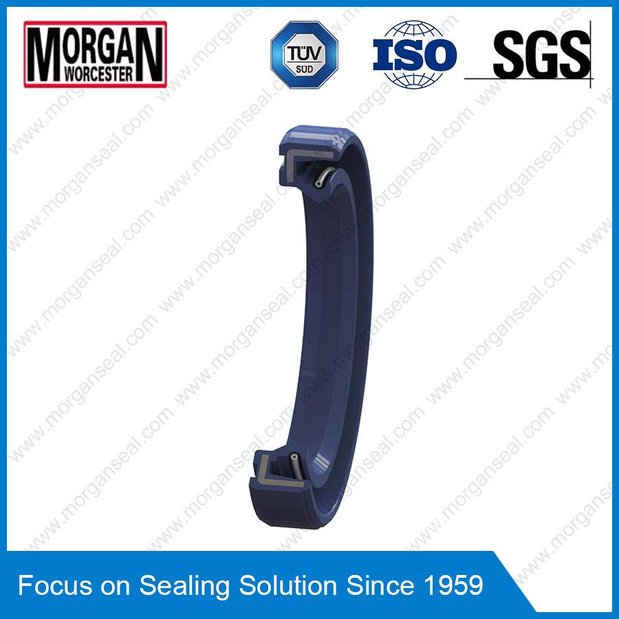 Sc/a Type Single Lip Inner Skeleton Rubber Oil Seal