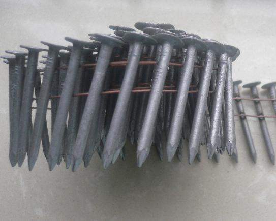 Hdg Coil Roofing Nail Photos Pictures