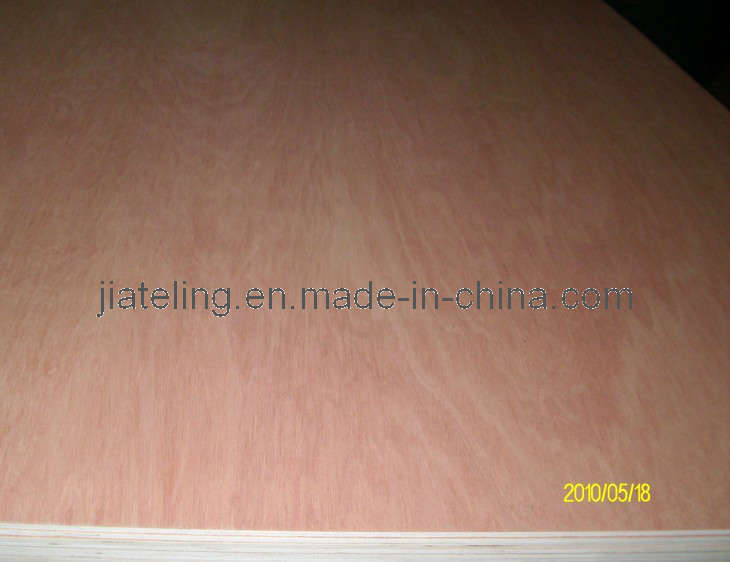 Good Bintangor Plywood/Commercial Plywood