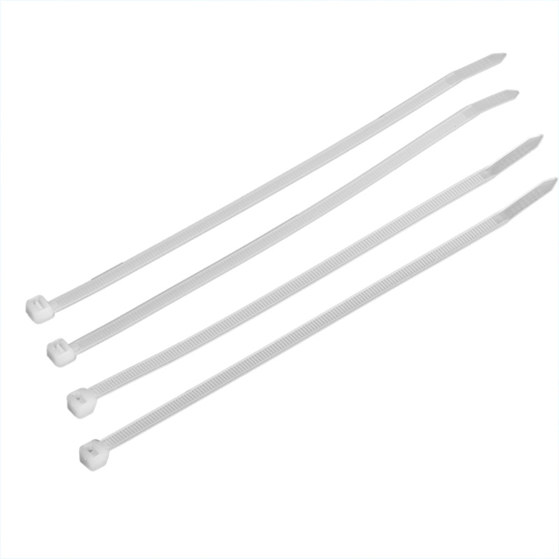 Plastic Self-Locking Nylon Strap Cable Tie Fastener (TC005-4825)