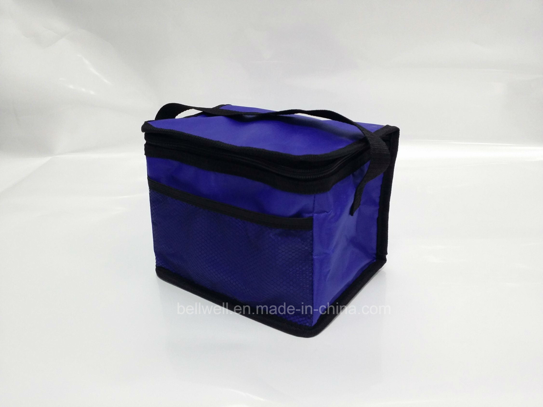 Light-Weigh Cooler Bag Beach Bag