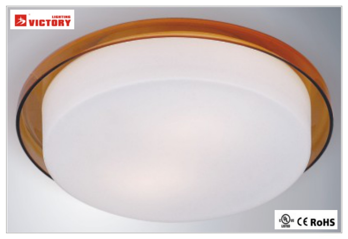 Modern Indoor Lighting Surface Mount Round LED Ceiling Lamp Light with Ce UL Rhos