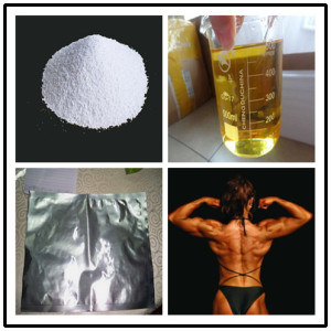 99% Purity Steroid Hormone Mesterone 17-Alpha-Methyl Testosterone 58-18-4 with Lower Price