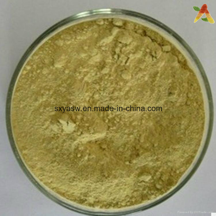 Manufacturer Supply Aloe Vera Extract 20% 90% Aloin