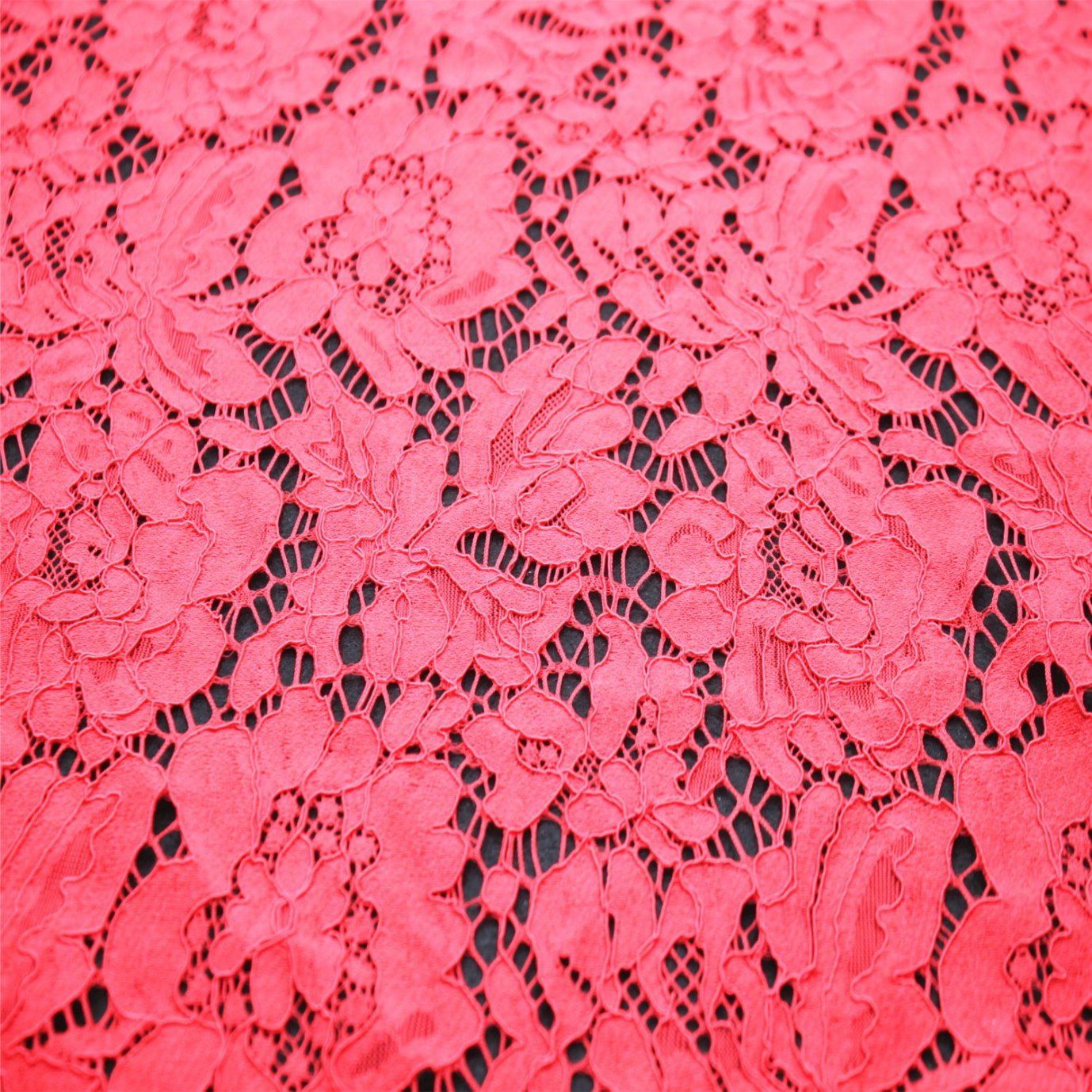 Fashionable Nylon Jacquard Lace Fabric for Garment