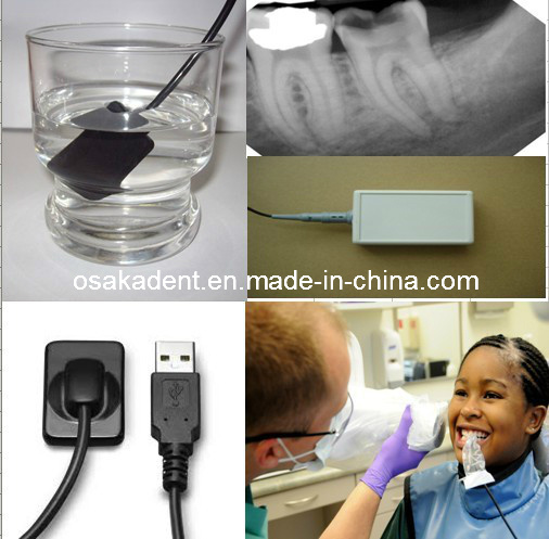 Dental Rad-Icon USB Sensor (Made in USA)