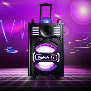 PA120 Wireless Bluetooth Portable Sound System 50W New Speaker