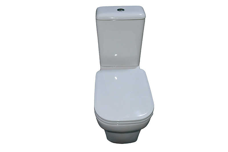 Two Piece Ceramic Toilet Washdown Toilet Water Closet Wc 1094A
