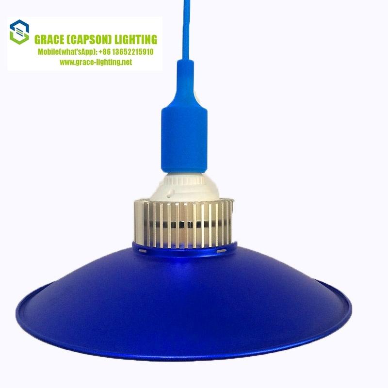 Decorative Supermarket LED 30W Pendant Lamp