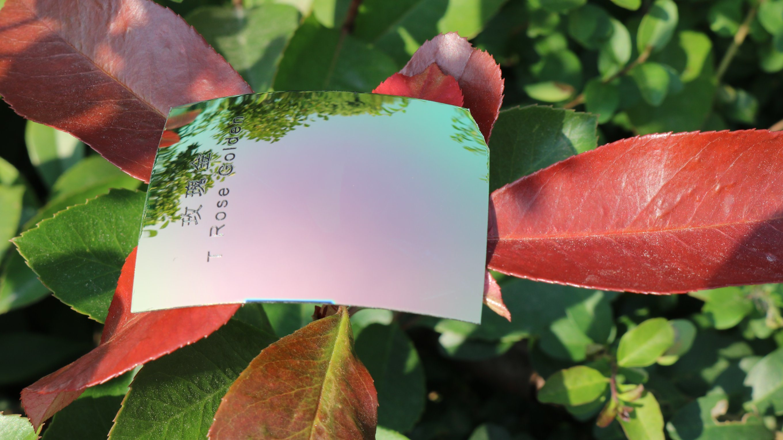 Colorful Eyeglasses Polarized Tac Lens (T Rose Golden)