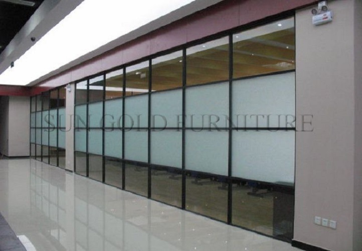Australian Standards Commercial Office Double Glass Partition Wall (SZ-WST790)