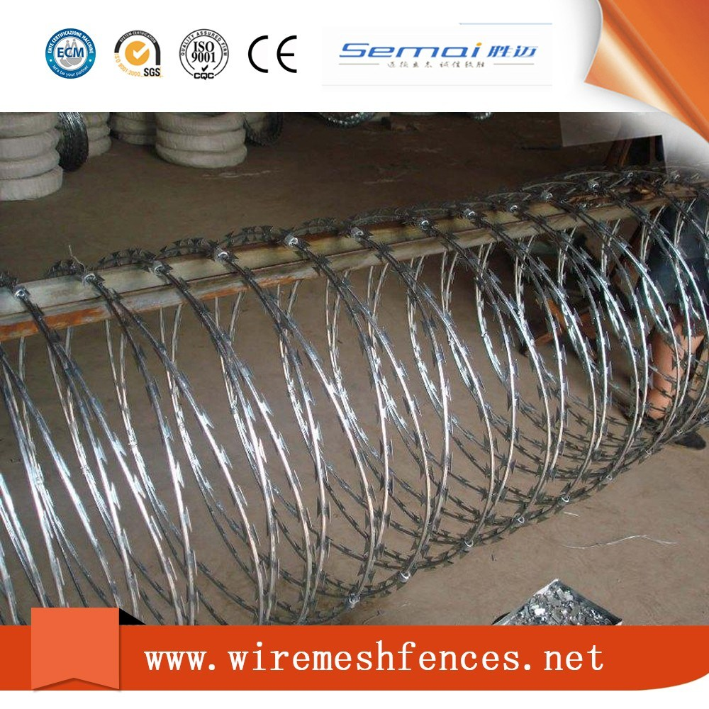 Concertina Razor Barbed Wire in Coil