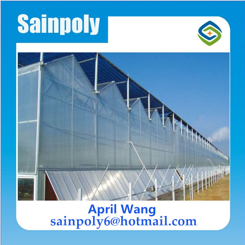 Low Cost Polycarbonate Greenhouse Hydroponic for Agricultural