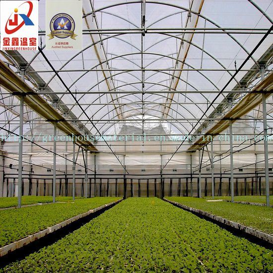 Plastic Film Greenhouse for Agriculture