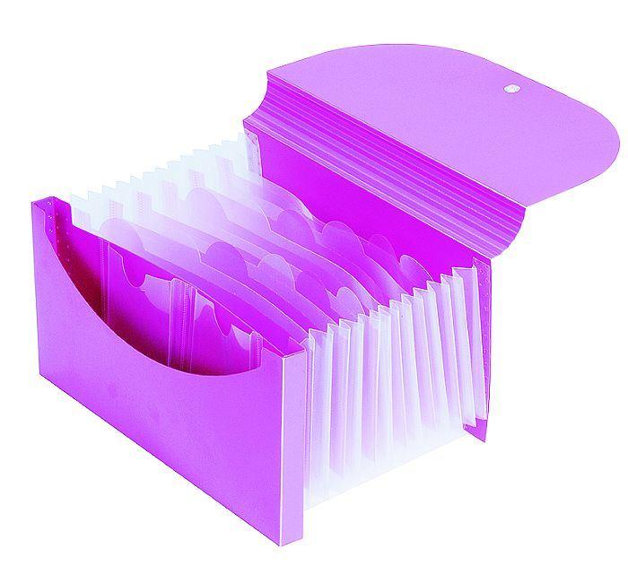 13 Expanding File Bag with Elastic Strap/ Briefcase (E-A002)