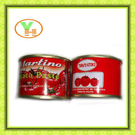Hot Selling Canend Tomato Paste Sala