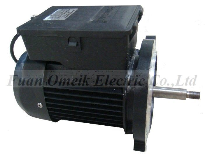 China Small Electric Motor 110v 220 Ms China