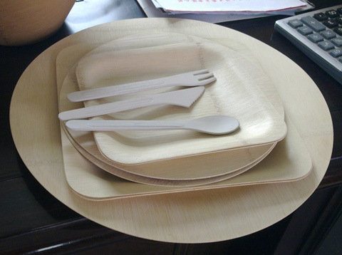 Disposable-Bamboo-Dinnerware-Set.jpg (480×358)