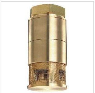 Bottom Valve Foot Valve NPT/BSPT 1 1/2