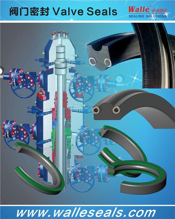 Oilfield Sealing Solutions Seals
