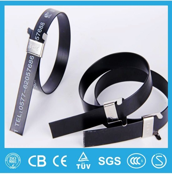 304 Epoxy Coated Stainless Steel Cable Tie-Wing Lock Type