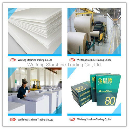 A4 Copy Paper for Printing Pictures