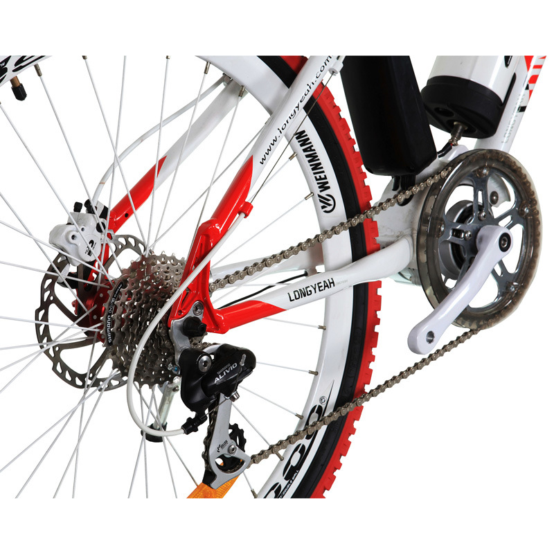Mountain Electric Bike (TDE1202Z NEW)