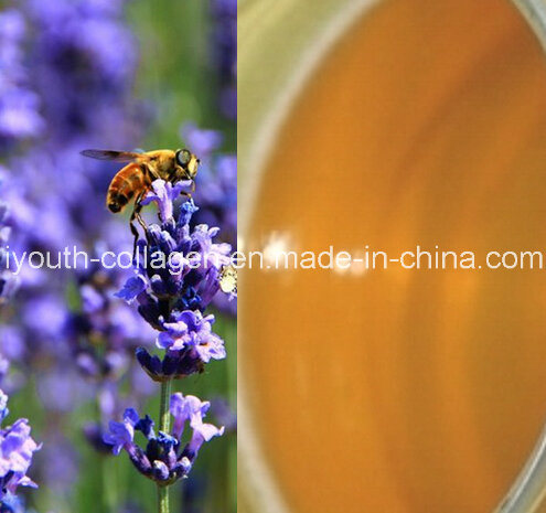 Top-Level 100%Natural Organic Lavender Honey, Organic Ripe Honey, No Antibiotics, No Pesticides, No Pathogenic Bacteria, Prolong Life, Health Food