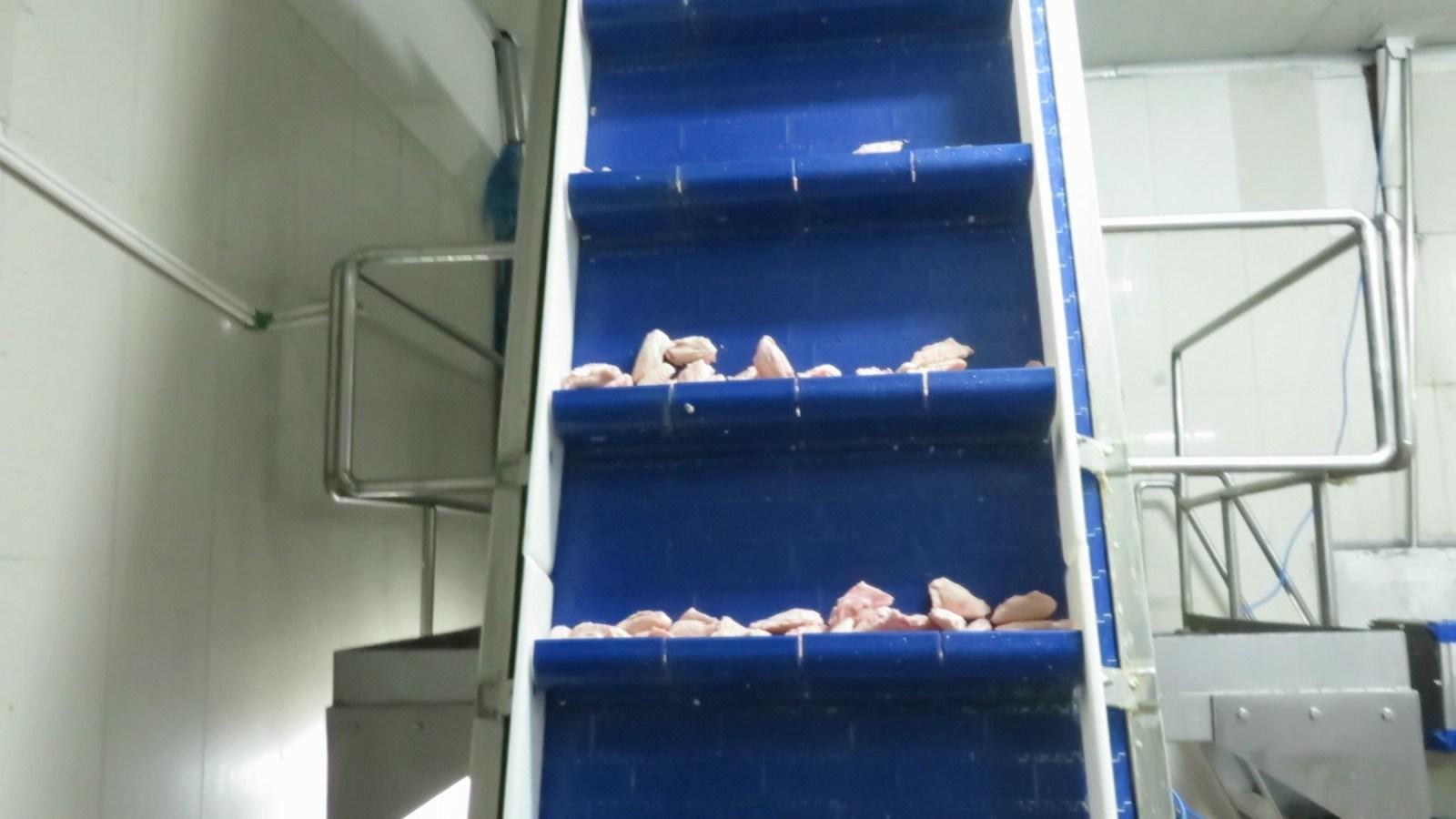 Food Grading Machine 1000g Weighing Machine