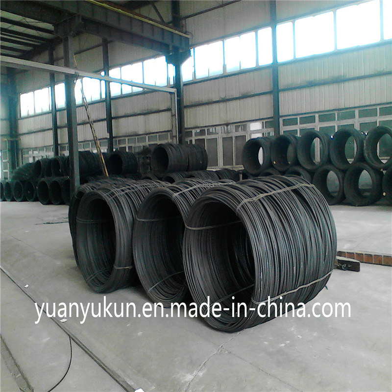 ASTM AISI Standard SAE 1006/1008/1010 Steel Wire Rod 10.5mm