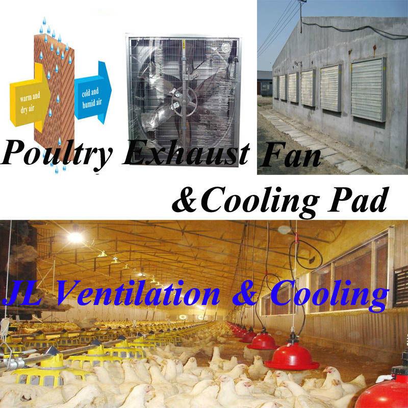 Air Flow 44000m3/H Poultry Fan/Greenhouse Exhaust Fan/Cooling Fan