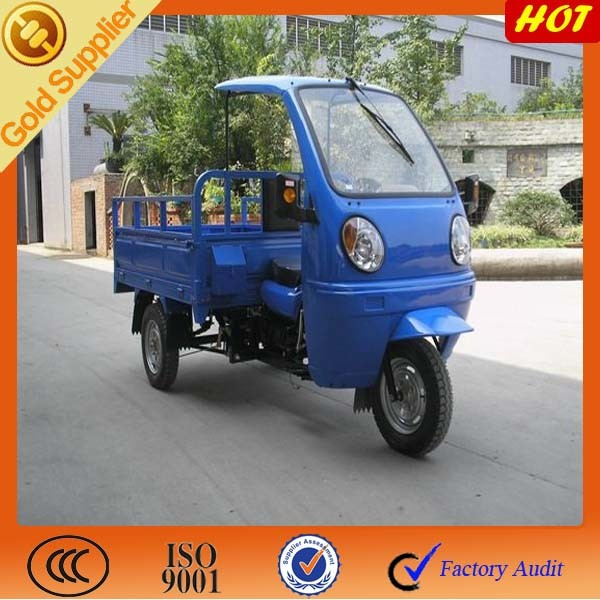 3 Wheel Motorized Cargo